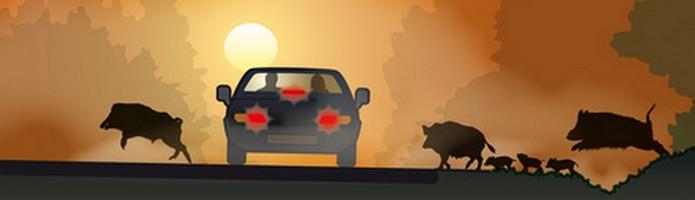 Lieferwagen Versicherung Teilkasko